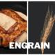Engrain épi de blé et pain